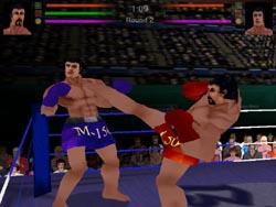 เกมส์มวยไทย 3 มิติ (3D Muay Thai)