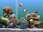 3D Aquarium Screensaver