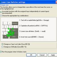Lower Case Switcher (โปรแกรม เปลี่ยนตัวหนังสือ จากตัวใหญ่ไปตัวเล็ก)
