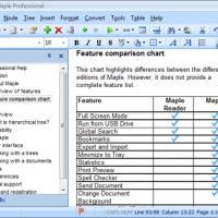Maple Professional (โปรแกรมจัดการเอกสาร เก็บข้อมูล backup ข้อมูล)