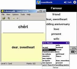 LearnWords Windows (โปรแกรมฝึกสอนภาษาต่างประเทศ)