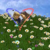 3D Valentines Day Screensaver (โปรแกรม พักหน้าจอ ของวันแห่งความรัก)