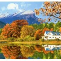 Gorgeous Fall Foliage 3D Screensaver