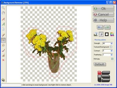 Background Remover (Plug-In ของโปรแกรม Photoshop)