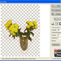 Background Remover (Plug-In ของโปรแกรม Photoshop)
