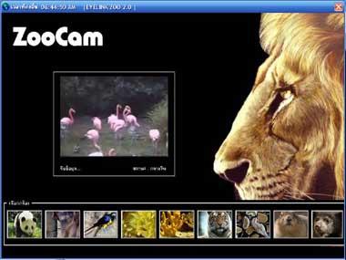 EyeLink Zoo (โปรแกรมนี้จะพาคุณๆ ไปเที่ยวสวนสัตว์กัน)