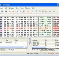 FlexHEX (โปรแกรมสำหรับแก้ไขไฟล์ที่มีขนาดใหญ่)