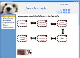 โปรแกรม คู่มือดูแลสุนัข (Dogs Care Manual Program)