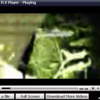 Easy FLV Player