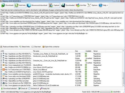 Minpony (โปรแกรม ช่วยดาวน์โหลดไฟล์ จากเว็บฝากไฟล์ อย่าง 4Shared, Megaupload, Rapidshare ฯลฯ)