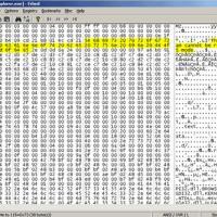 Frhed (Free hex editor) (โปรแกรม แก้ไข ไบนารี่ไฟล์ แจกฟรี)