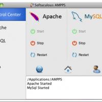WampServer (โปรแกรม สำหรับ จำลองเครื่องเป็น Server ส่วนตัว)