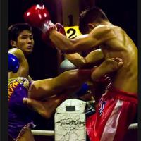 Muay Thai illustrated (App เรียน ศิลปะมวยไทย การชกมวยไทย ฝึกมวยไทย)