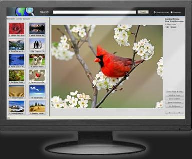 โปรแกรมตกแต่งหน้าจอ Webshots Desktop