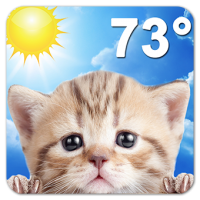Weather Kitty (App แมวน้อย พยากรณ์อากาศประจําวัน)
