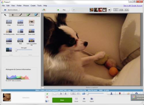 ดาวน์โหลดโปรแกรม Picasa ฟรี