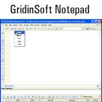 GridinSoft Notepad :