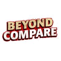 Beyond Compare (โปรแกรมเทียบความต่างไฟล์ โฟลเดอร์) :