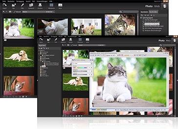 ดาวน์โหลดโปรแกรม Studioline Photo Basic