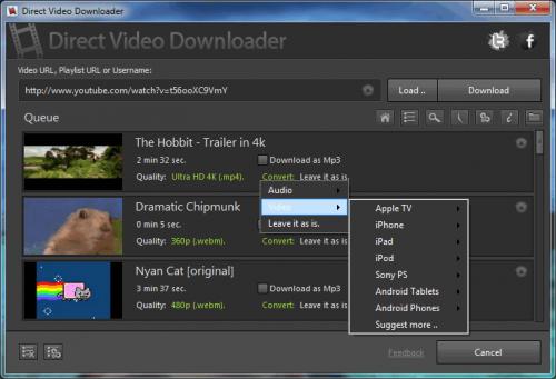 โปรแกรมโหลดวีดีโอ