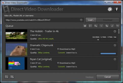 Direct Video Downloader (โหลดวีดีโอ เพลง Youtube) :