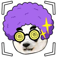 Face Photo Sticker Wild Foto (App เปลี่ยนหน้าตัวเอง เป็นสัตว์)