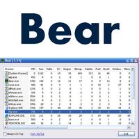Bear (โปรแกรม Bear ดูโปรเซสเครื่อง โดยละเอียด ฟรี)