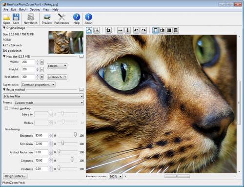 โปรแกรมขยายรูป BenVista PhotoZoom Pro