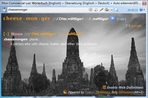 โปรแกรมแปลภาษา Dictionary.NET