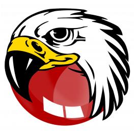 BlackHawk Web Browser :
