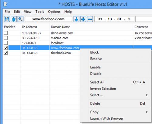 ดาวน์โหลดโปรแกรม BlueLife Hosts Editor