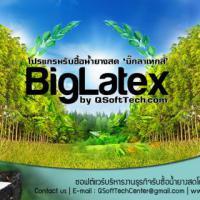 BigLatex (โปรแกรม BigLatex รับซื้อน้ำยางพาราสด ยางแผ่น เศษยาง )