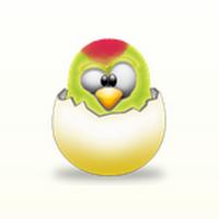 WinParrot (โปรแกรม WinParrot จำการเคลื่อนไหว เม้าส์ คีย์บอร์ด) :