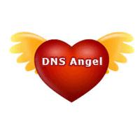 DNS Angel (โปรแกรม DNS Angel บล็อคเว็บไซต์)