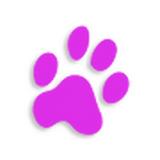 Senasarea (โปรแกรม Senasarea ตัดต่อวีดีโอ เซ็นเซอร์วีดีโอ) :