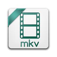 Meteorite (โปรกรม Meteorite ซ่อมไฟล์วีดีโอนามสกุล MKV)