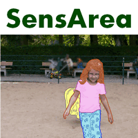 Sensarea (โปรแกรม Sensarea เบลอหน้าคน วัตถุ สิ่งของ ในวีดีโอ)
