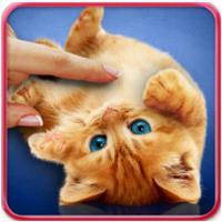 Purring Cats (App วอลล์เปเปอร์แมวเหมียว ดุ๊กดิ๊ก)