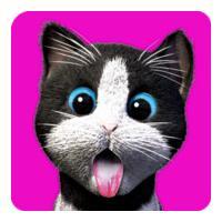 Daily Kitten (เกมส์ น่ารักๆ สำหรับคนอยากเลี้ยงแมว)