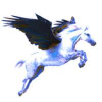 Pegasus Mail (โปรแกรม Pegasus Mail บริหาร จัดการ อีเมล์)