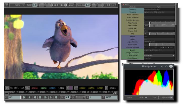 โปรแกรมเครื่องเล่นวีดีโอแบบมืออาชีพ mrViewer
