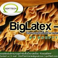 BigLatex Pro (โปรแกรมรับซื้อน้ำยาง โปรแกรม latex มีระบบยืมคืนเงิน)
