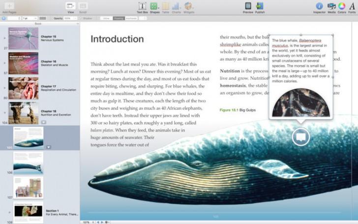 โปรแกรมทำหนังสือ iBooks Author