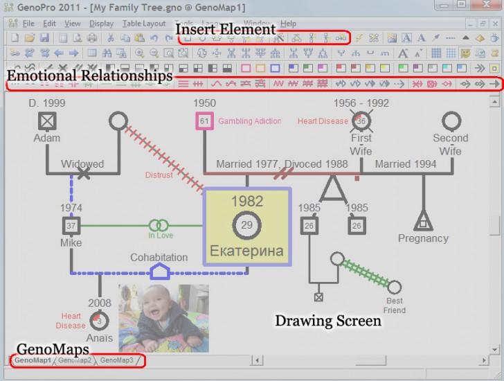 โปรแกรมสร้างแผนภาพวงศ์ตระกูล GenoPro