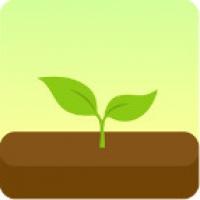 Forest Stay focused (App แก้อาการติดมือถือด้วยการปลูกป่า)