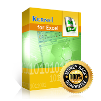 Kernel for Excel Recovery (โปรแกรม Excel Recovery กู้ไฟล์สเปรดชีต Excel)