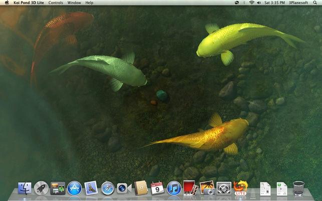 โปรแกรมพื้นหลังบ่อปลาคาร์ฟKoi Pond 3D Lite