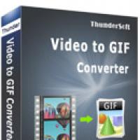 ThunderSoft Video to GIF Converter (โปรแกรมแปลงไฟล์วิดีโอ เป็นภาพ GIF)